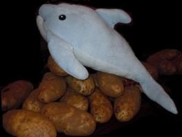 dolphin_on_potato_by_jopierce-d6j80h1