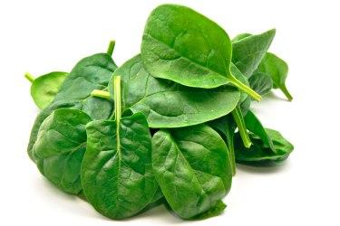 spinach-web
